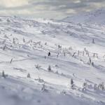 Zimowy Ultramaraton Karkonoski / fot. Bikelife